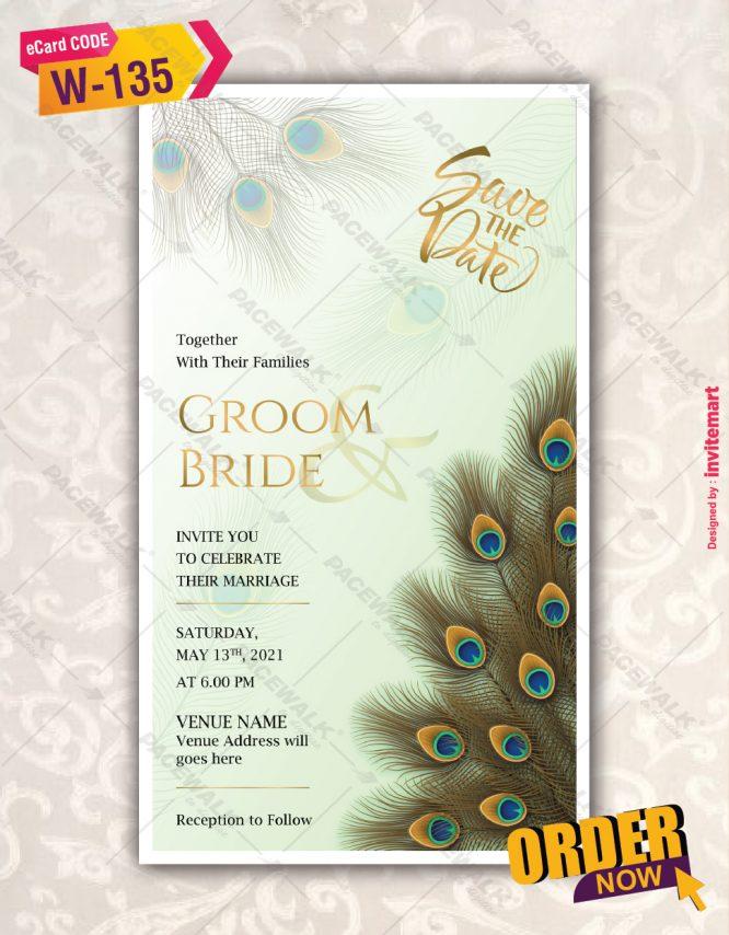 Peacock Feather Wedding Invitation Card